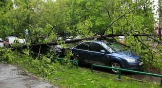 Москвичей предупредили об опасности шатких строений при сильном ветре